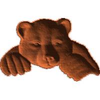 BearLookingOverTop