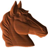 Horse Head - AB - 001