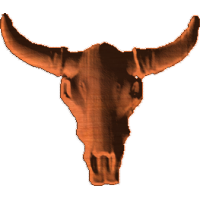 LongHornSkull