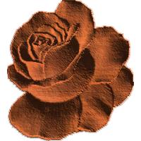 Rose - AB - 003