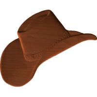 Cowboy Hat 3