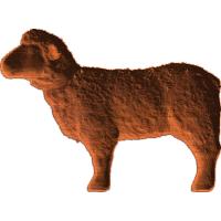Sheep - AB - 001