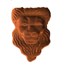 Lion Face - CSF