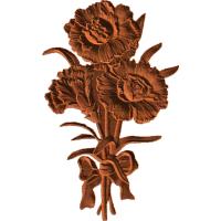 Carnation - AB - 001
