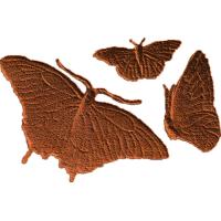 Butterflies - AB - 001