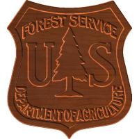 Forest Service patch - CSF