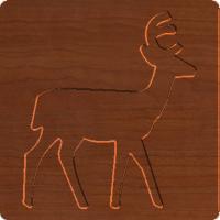 Deer Xing 002 - CSF
