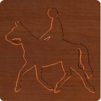 Horse Xing 002 - CSF