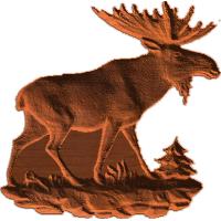 Moose - AB - 001