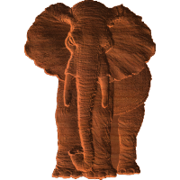 Elephant - Front View - AB - 001