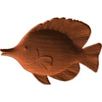 Tropical Fish - AB - 001