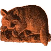 Raccoon On Log - AB - 001