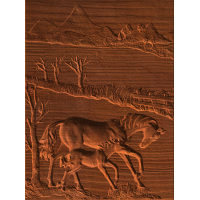 Horse And Colt Scene - AB - 001