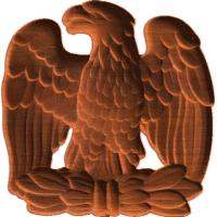 Eagle - AB - 004