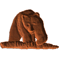 Bear front view