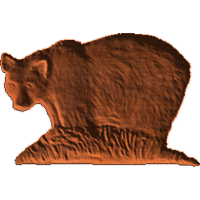 Bear side view