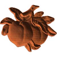 Peaches - AB - 001