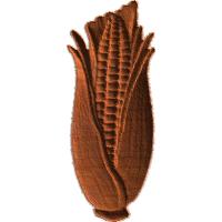 Corn Ear - AB - 001