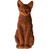 Cat - AB - 010