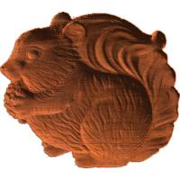 Squirrel - AB - 002