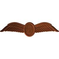 Royal Australion Aircrew