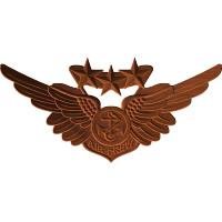 Air Crew Wings