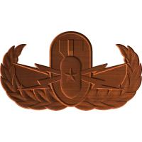 Explosive Ordnance Division Senior Badge