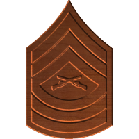 Master Sergeant E8 Rank