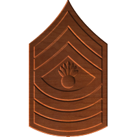 Master Gunnery Sergeant E9 Rank