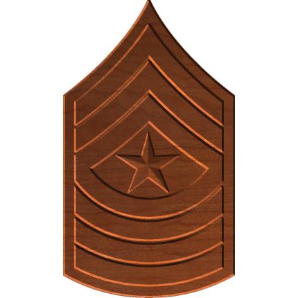 Sergeant Major E9 Rank