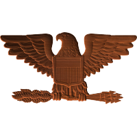 Military Eagle with Arrows