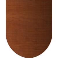 Bohemian Shield
