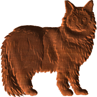 Coon Cat Pattern