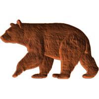 Black_Bear3x5_1