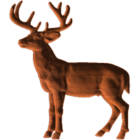 Deer_Collection_1