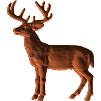 Deer_Collection_1