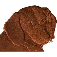 Beagle Dog Pattern 1