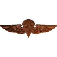 Jump Wing Pin Pattern